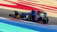 So schön bunt: Für Max Verstappen und Torro Rosso läuft es zurzeit richtig gut.