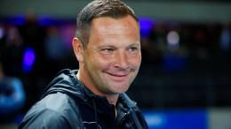 Pal Dardai wird neuer Trainer bei Hertha BSC