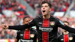 Warum Leverkusen um Havertz und Brandt bangen muss