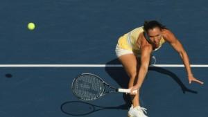 Jankovic und Serena Williams spielen um den Tennis-Thron