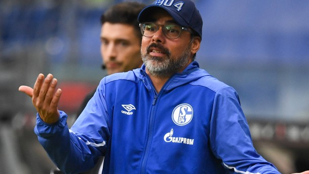 Was Schalke jetzt noch Mut macht
