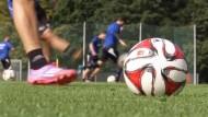 SC Paderborn freut sich auf die Bundesliga