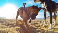 Apple startet Angriff auf GoPro