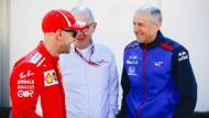 Was bringt die Zukunft der Formel 1? Franz Tost (rechts) mit Sebastian Vettel.