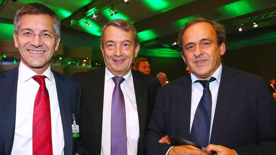 Man kennt sich: Adidas-Chef Hainer, DFB-Präsident Niersbach und Uefa-Chef Platini (von links).