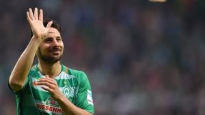 Die Kölner Hoffnung kommt aus dem Wald
