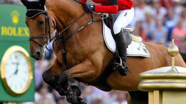 Freud und Leid zu Pferde