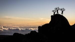 Radfahren als Hochseilakt und Abenteuer
