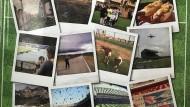 Romantische These: Fußball ist Fußball, egal, ob im Stadiontempel oder auf dem besseren Bolzplatz.