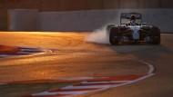 Wer dominiert in dieser Saison die Formel 1?