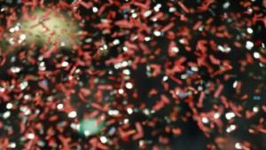 AC Mailand gewinnt Weltmeisterschaft der Vereine