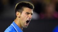 Djokovic im Finale gegen Murray