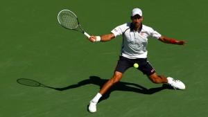 Djokovic siegt mit Verspätung