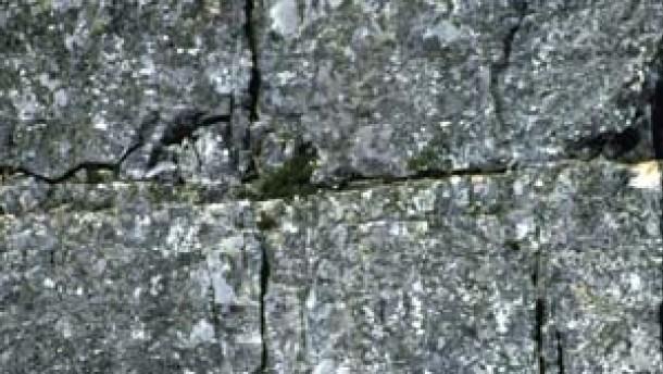 Immer an der Wand lang: Abseilen an den Steilküsten