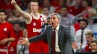 Am Rande des Kontrollverlustes: Bayern-Trainer Svetislav Pesic