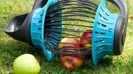 Einfach mal überfahren, schon sind die Äpfel gesammelt