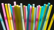 Plastikmüll ist in aller Munde