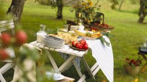 Das Leben ist ein Picknick