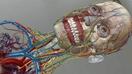 Röntgens Geisterstunde