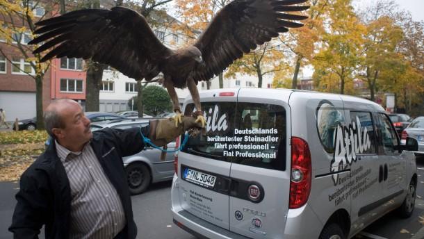 Adler Attila - Das lebende Maskottchen der Eintracht Frankfurt kommt zu einem Besuch in die Technik und Motor Redaktion.