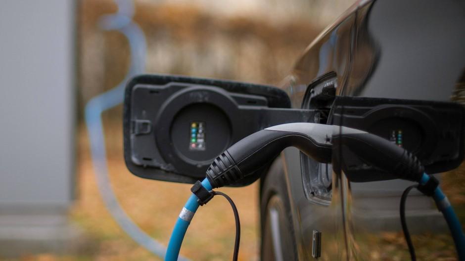 21 Prozent der Neuwagenkäufer bezeichnen das Elektroauto als perfektes Alltagsfahrzeug.