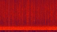 Spektrogrammvideos
