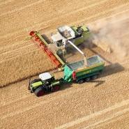 Ackerland ist in den vergangenen zehn Jahren stärker im Wert gestiegen als der Dax.