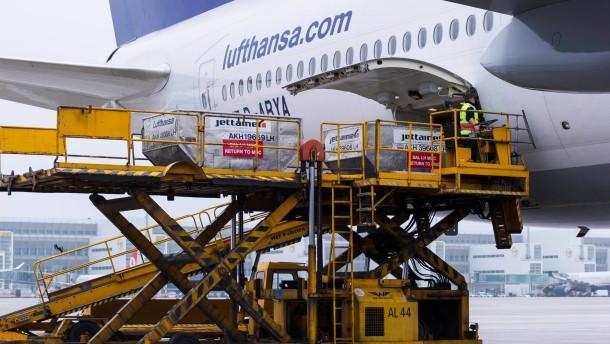 Laengstes Passagierflugzeug der Welt wirbt kuenftig fuer Sachsen-Anhalt