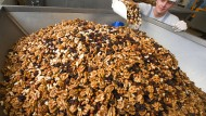 Auch die Mitarbeiter müssen harte Nüsse knacken: Produktion von Studentenfutter in Mecklenburg-Vorpommern