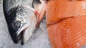 Mehr Fisch und nicht Fleisch