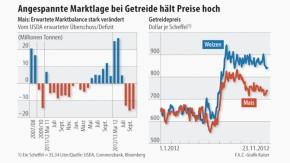 Infografik / Agrarmarkt / Angespannte Marktlage bei Getreide