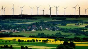 Behörde fordert mehr Naturschutz bei Windradausbau