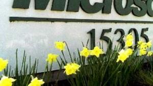 Microsoft wird Prognosen erfüllen
