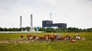 Atomausstieg lässt Häuserpreise sinken