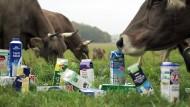 Schmidt fordert Zugeständnisse beim Milchgipfel