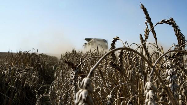 Klöckner: Sichere Ernten nicht mehr selbstverständlich