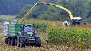 Biomasse sorgt für neuen Schwung