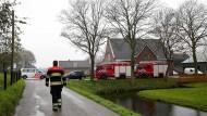 Niederlande töten wegen Vogelgrippe 150.000 Hühner