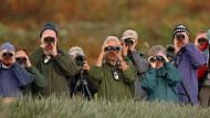 Die Vogelbeobachtung ist eine Domäne der Bürgerwissenschaft.