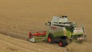 Bauern fordern Dürre-Nothilfen