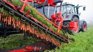 Wenig ökologische Landwirtschaft in Deutschland
