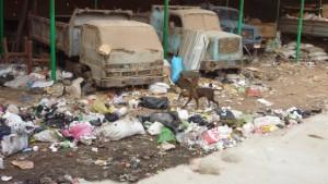 Wie Kairos Ärmste wirtschaften