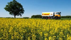 Biokraftstoff soll klimafreundlicher werden