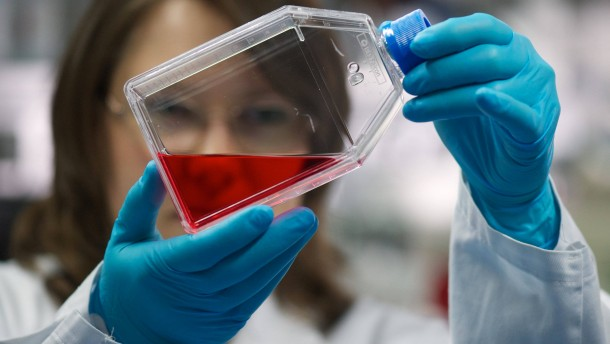 Biotechnologie-Report Sachsen 2012