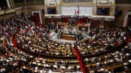 Frankreich will Fake News von Gerichten verbieten lassen