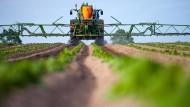 Warum Pflanzenschutzmittel kaum noch wirken