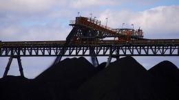 """Die """"Bank der Asiaten"""" verabschiedet sich aus fossilen Brennstoffen"""