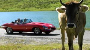 Werden Jaguar und Land Rover bald indisch?