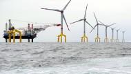 Warum Amerika kein Windkraftwerk im Meer hat