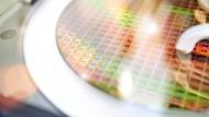 Chips auf einem Siliziumwafer im Dresdner Werk von Infineon